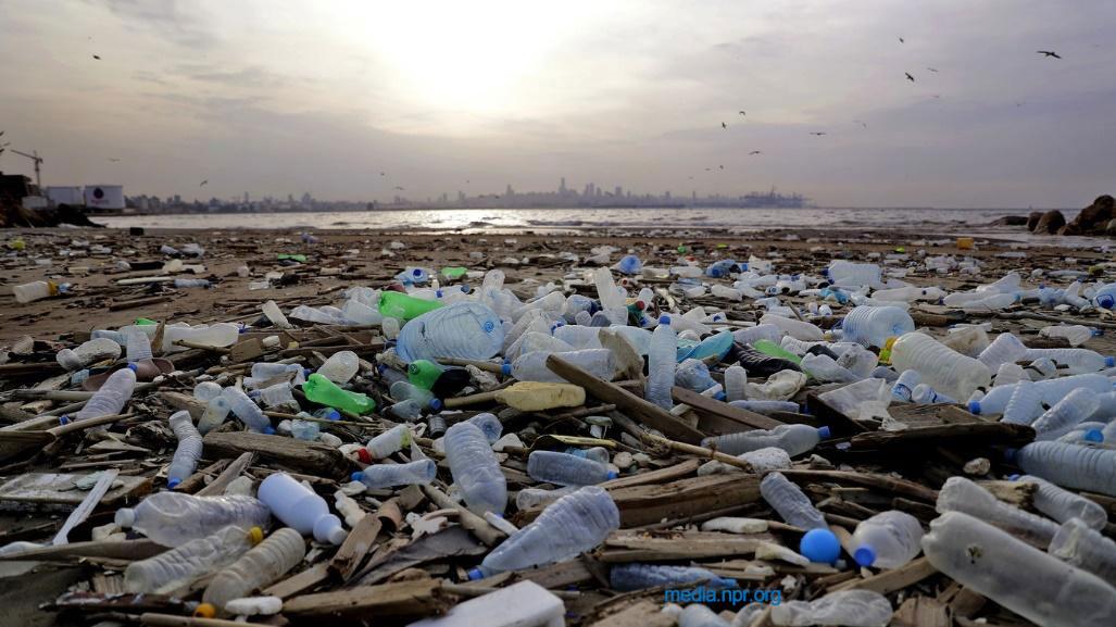2020世界海洋日